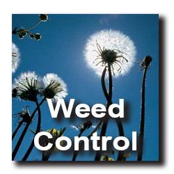 weedcontrol